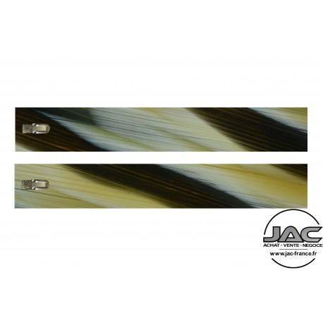 Corne Noire - 0002CO