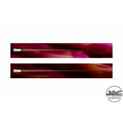 Transparent Rose - 0081TR